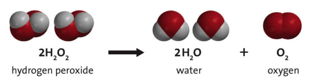 Профессор Неумывакин и перекись водорода: спасение или вранье?