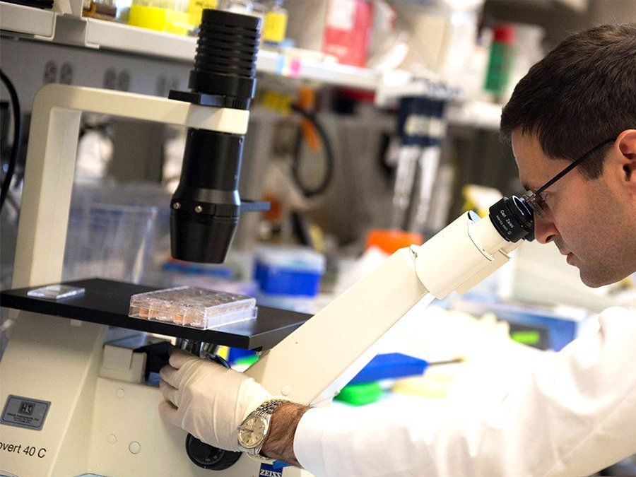 Ученые: Толстая кишка вызывает рак…