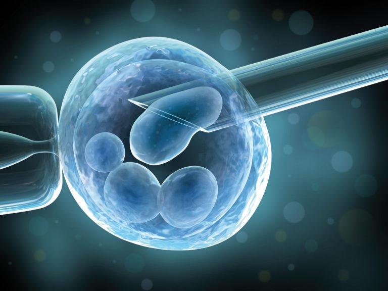 ЭКО и рак - есть ли связь, или очередные народные мифы?