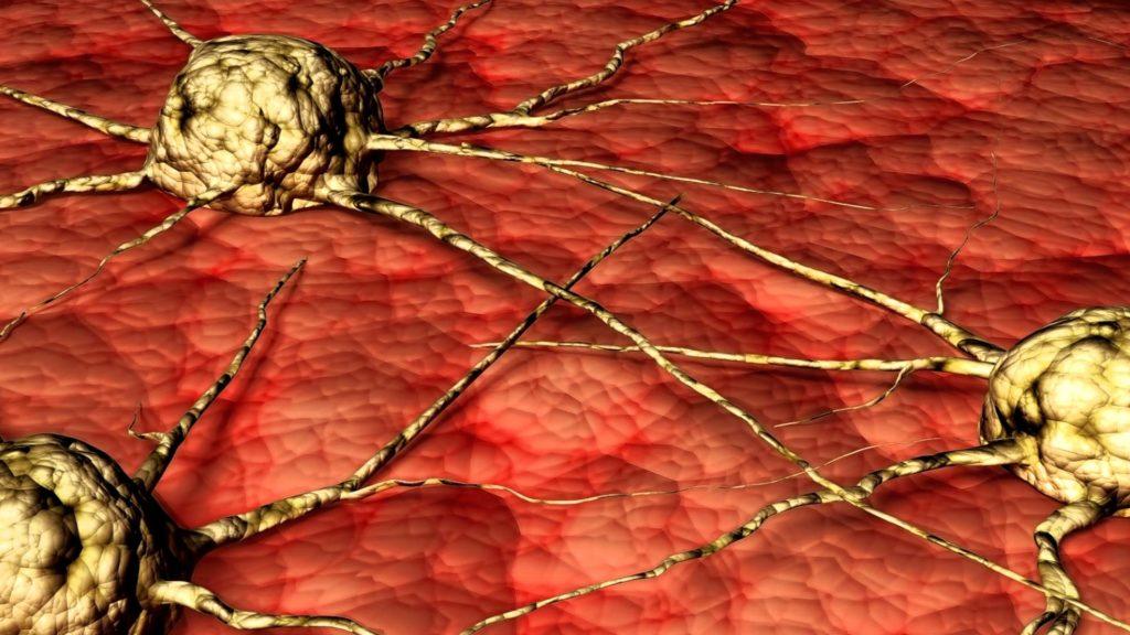 Ремиссия в онкологии: чудо или закономерный процесс?