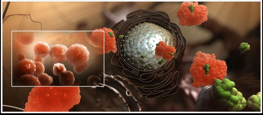 Иммунотерапия при онкологии и раке: что это такое, цена, препараты