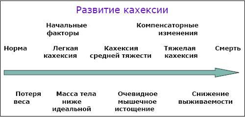 Раковая кахексия: что это такое, продолжительность жизни