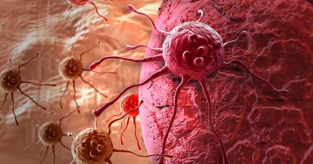 Корень одуванчика при онкологии и раке: лечебные свойства, как принимать